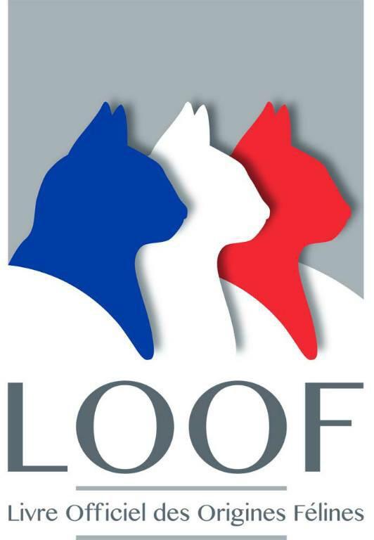 Formation CETAC Le 20 au 22 Février 2015